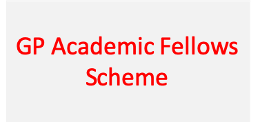 Academic Fellows Scheme